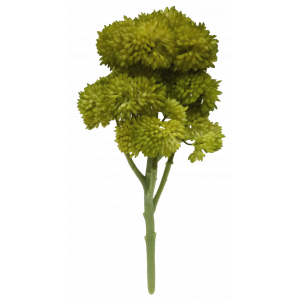 Light Green Cauliflower Pick