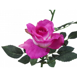 S5729Mag Magenta Pink Rose Alice rose Artificial Flower