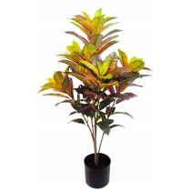 S2856MX 91cm Red Yellow Croton in Pot