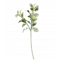 71cm Dusty Miller Spray