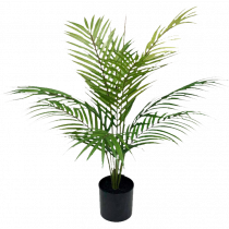 S2853Grn Green Palm in Pot 61cm