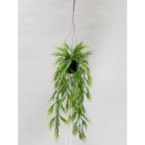S2749Grn Mini Bamboo in Hanging Pot