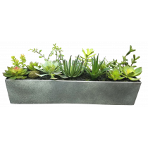 S2762Grn 13 Succulents in a metal tin container (51cmx11cmx11cm)