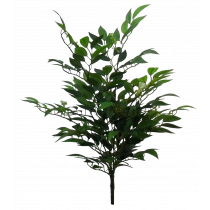S2772grn Ruscus Bush with 266 leaves & berries