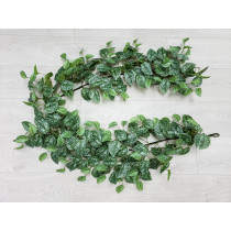 6ft Scindapsus Pictus Garland Silvery Anne Silver Pothos S2788Grn
