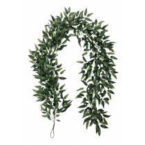 S2825Grn 6ft Ruscus Leaf Garland
