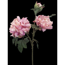 S3722DPnk Peony Spray Dusty Pink