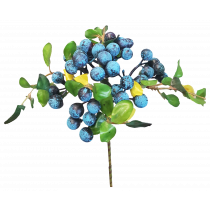 Blue Berry Pick