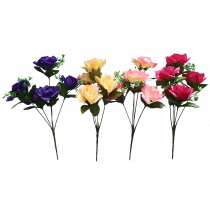 S3775AAsst Rose Bush Assorted Pack Discount Bushes