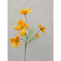 Mini Cosmos Spray 60cm