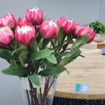 S3874Pnk Small Hot Pink Protea