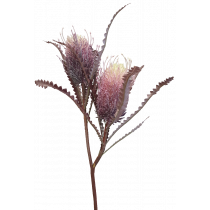 S3877Pur Dark Purple Banksia Spray