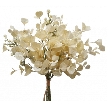 S3984Crm Cream Eucalyptus and Flower Bundle