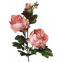 S3995DstPnk Dusty Pink Peony Spray 2 Flowers & a bud