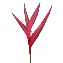 79cm Bird Of Paradise Red