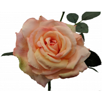 S5714Sal Salmon Quiannie Artificial Queen Rose