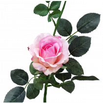 S5729Pnk Pink Rose Artificial flowers