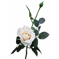 S5729Van Vanilla Cream Rose Wedding artificial flowers