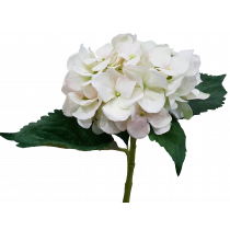 Cream Pink Hydrangea artificial Brisbane JMCFLORAL