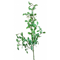 104cm Privet Leaf Branch