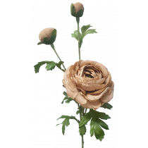 S5915LtBrn Light Brown Ranunculus Spray x 3