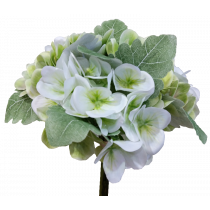 White Hydrangea Wedding Bouquet S7502WhtGrn