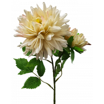 Dusty Crm Dahlia by 2 (One Large, One Opening) S7548Crm