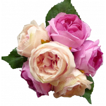 S7552PchBty Beauty and Peach Peony Rose Bouquet