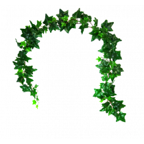 6ft Ivy Garland w/109lvs SoftTouch