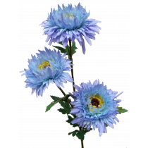 Baby Blue Aster x 3 flowers S9878Blu