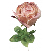Dusty Cream Pink Dried Rose S9882CP