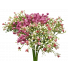S3734Pnk Baby Breath Pink Gyp Bush